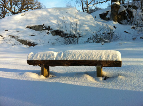 Snow Bench - Winter wonderland, and dog