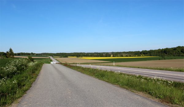 Some Snaps Of The Swedish Country Side