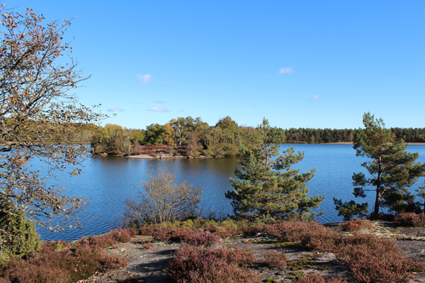 A Gorgeous Walk Around Lake Farskesjon In Sweden