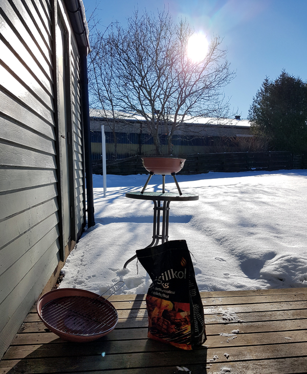 Winter Barbecue In Sweden